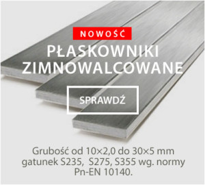 Euro Inwest - Metale kolorowe i blachy żaroodporne znajdują sie w ofercie firmy Euro-Inwest w Poznaniu. Poznaj pełną ofertę naszych produktów. 00-300x270